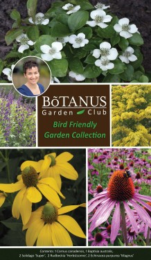 Bird-Friendly Garden Collection