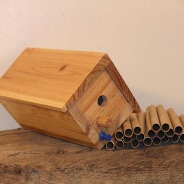 Mason Bee Starter Cottage