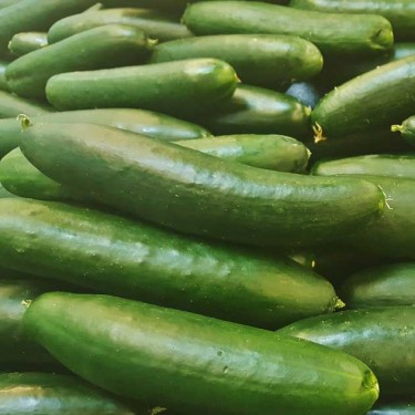 Cucumber 'Marketmore'-Aimer's Organic Seed
