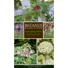 Enchanting Allium Collection