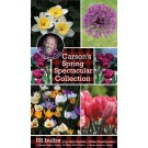 Carson's Spring Spectacular Collection