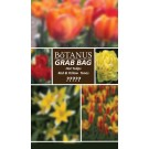 Botanus Grab Bag-Hot Tulip Mix