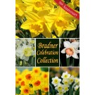 Bradner Celebration Collection
