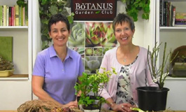 Botanus Garden Club Episode 134