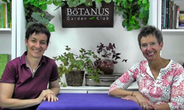 Botanus Garden Club Episode 163