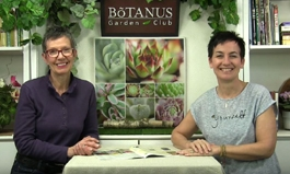 Botanus Garden Club Episode 211