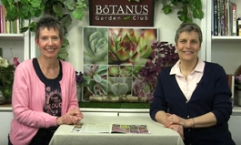 Botanus Garden Club Episode 212