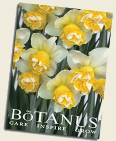 Botanus Fall 2019 Catalogue