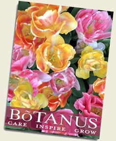 Botanus Fall 2020 Catalogue