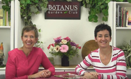 Botanus Garden Club Episode 126