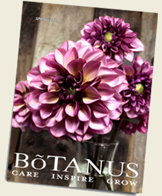 Botanus Spring 2021 Catalogue