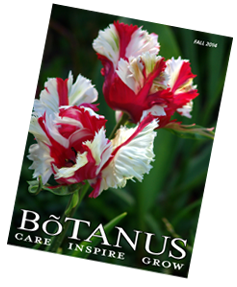 Botanus Fall 2014 Catalogue