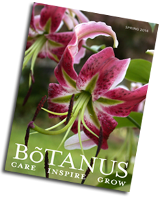 Botanus Spring 2014 Catalogue